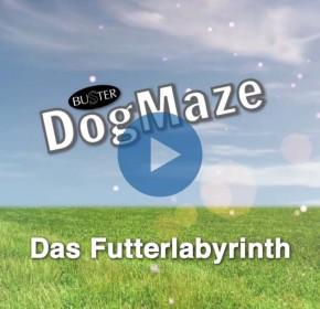 Buster DogMaze | WDT Produktspot